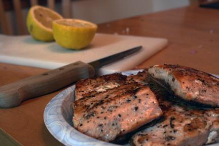 Salmonpost