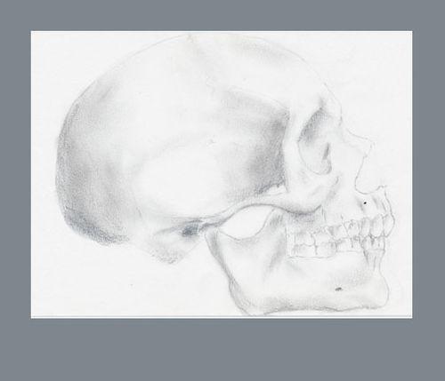 Skullsidepost