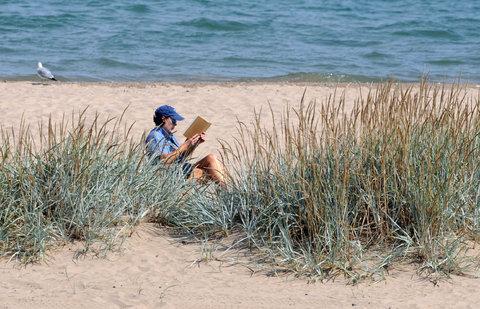 03-beachbook-LN-blog480-v2