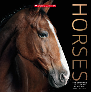 Horses5ca62c2e3cad8