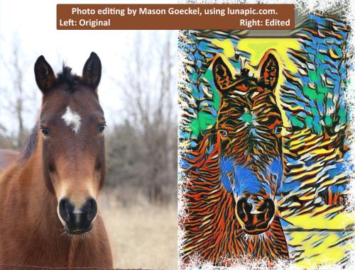 Mason_Horse_edit