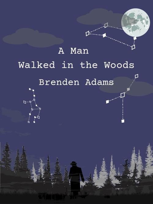 A Man Walked in the Woods (1)-1